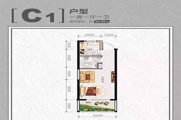 C1户型一房一厅一卫建筑面积:39.50㎡
